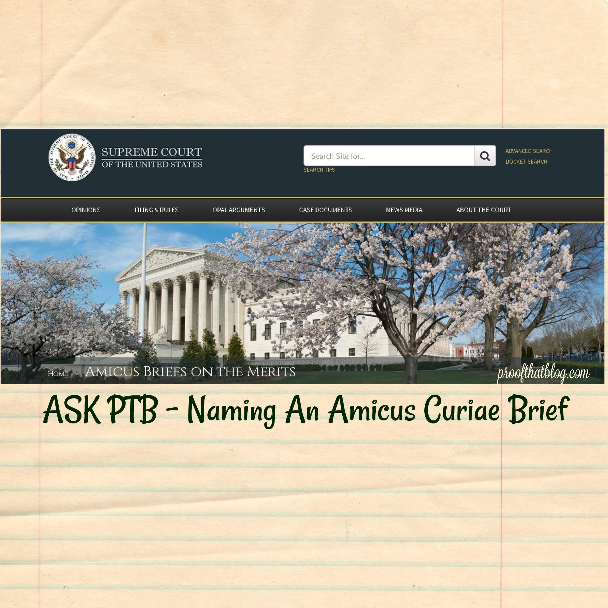 how to write a amicus curiae brief
